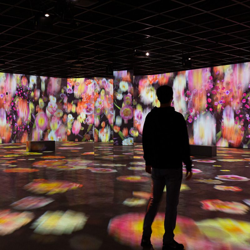 Inside Magritte Mostra Immersiva